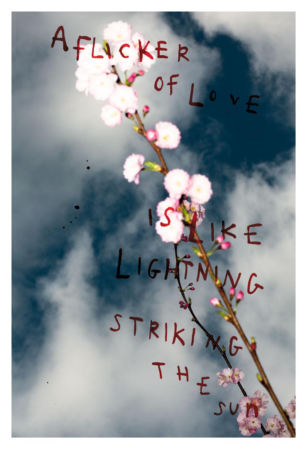 Melissa Spiccia | SEE FLOWERS IN HELL LIGHTNING STRIKING THE SUN MELISSA SPICCIA