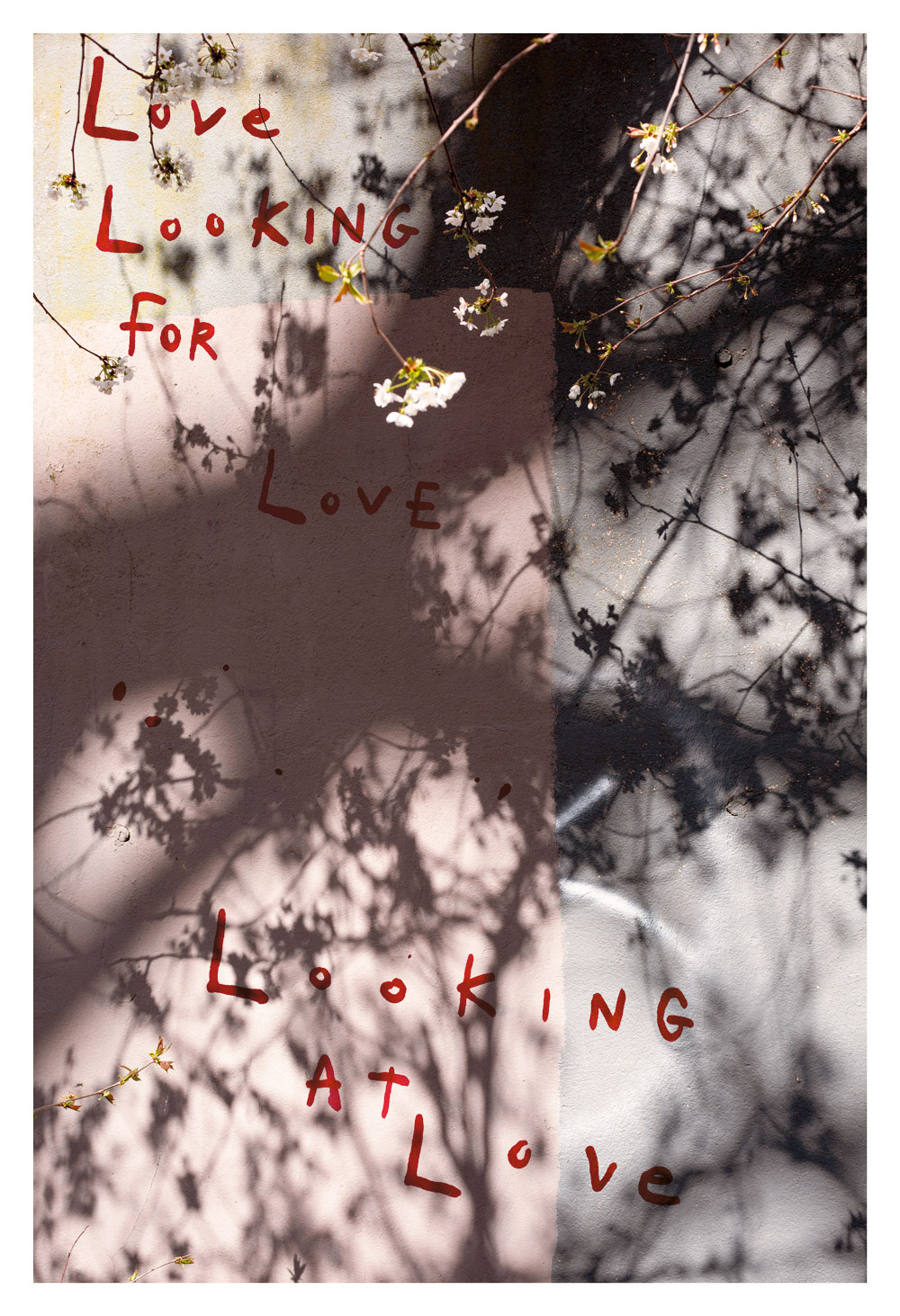 Melissa Spiccia   SEE FLOWERS IN HELL LOVE LOOKING FOR LOVE MELISSA SPICCIA