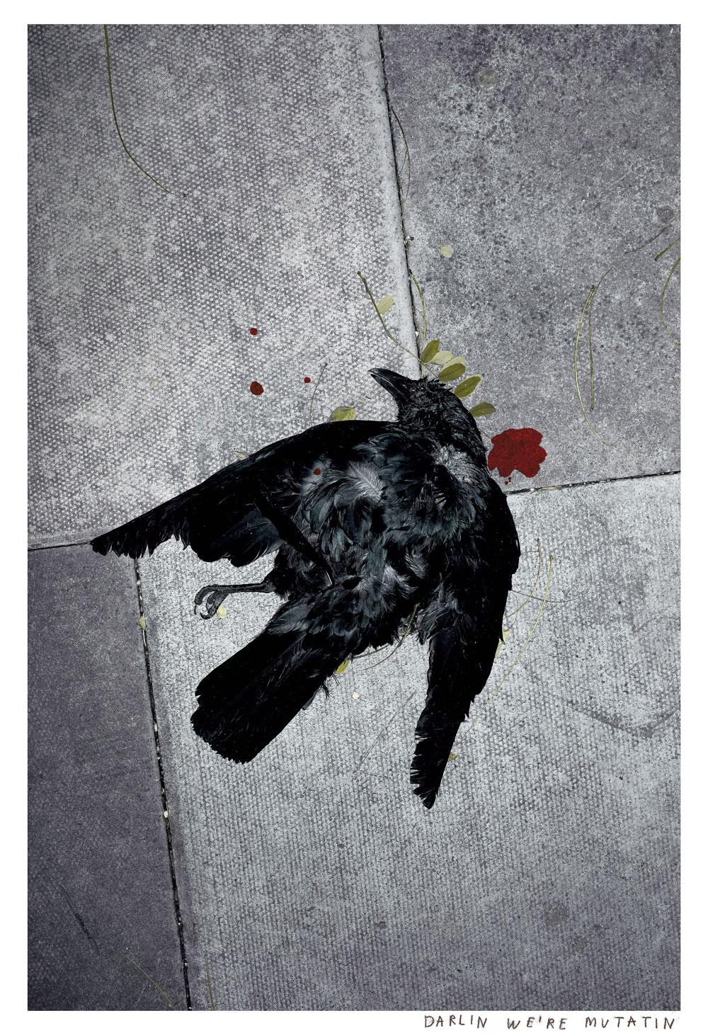 Melissa Spiccia | SEE FLOWERS IN HELL DARLIN WE'RE MUTATIN MELISSA SPICCIA